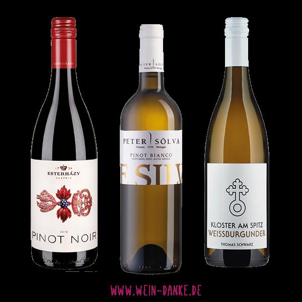 Weinpaket - Probierpaket Burgunder